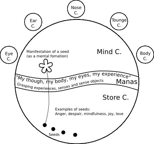 8 consciousnesses diagram